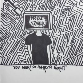 Noise Quota
