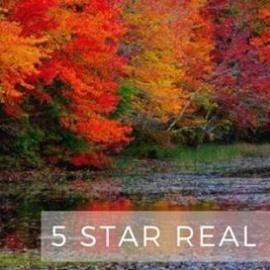 5 Star Real Estate Pros - Dave Shirlin & David Lee
