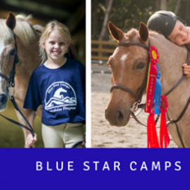 Blue Star Camps Equestrian