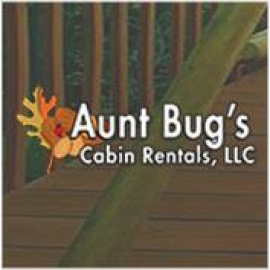 Aunt Bug S Cabin Rentals Llc Home Improvement Repair Pigeon