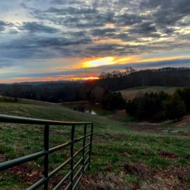 Windy Hill Farm & Preserve