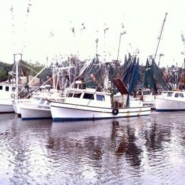 Livingston's Bulls Bay Seafood