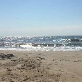 Seaside Vacations Chincoteague Island