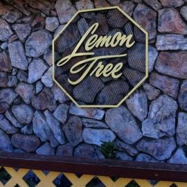 Lemon Tree Alameda