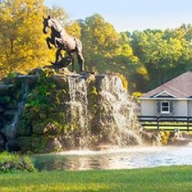 Equestrian Springs - Ocala's Most Beautiful Gated Horse & Nature Community