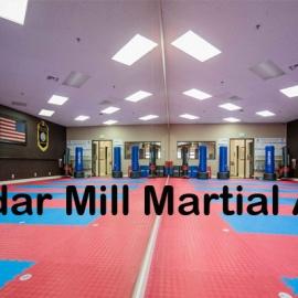 Cedar Mill Martial Arts