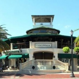 Coconut Grove Miami Nightlife Restaurants Things To Do