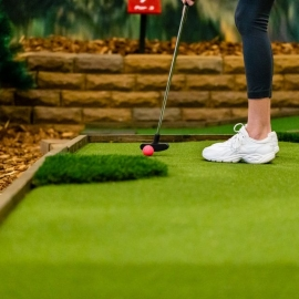 The Back 9 Indoor Golf