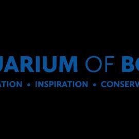 Aquarium Of Boise