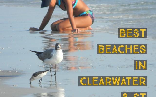 Best Beaches in the Clearwater St Petersburg Area