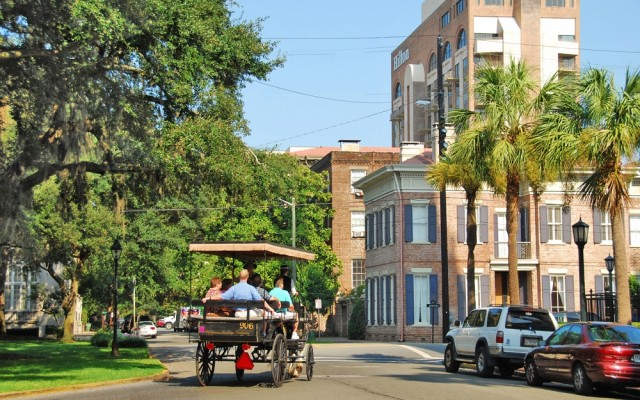 The Best Suburbs in Savannah