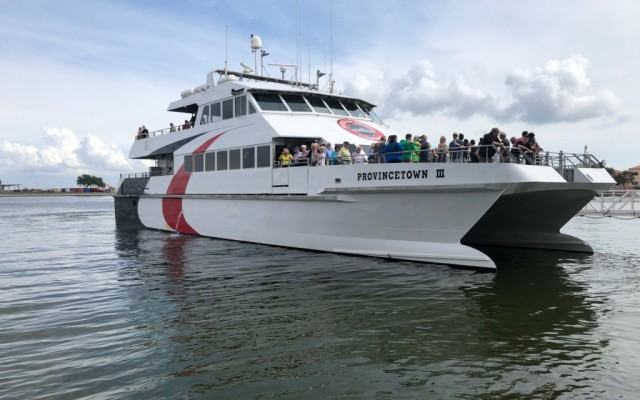 To St. Petersburg by Sea! A Tampa Native's Journey on the Cross-Bay Ferry