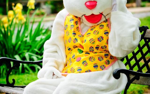 Easter Bunny Photos in North Central Florida