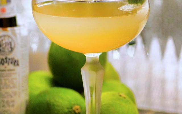 Best Margaritas in Gainesville