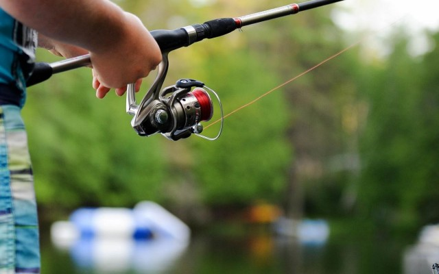 Best Places To Go Fishing in Orlando