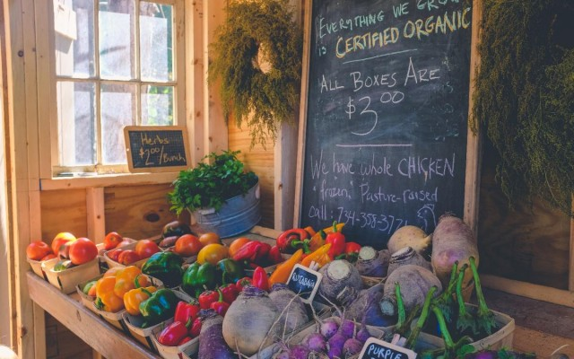 Spend a Saturday at the Sarasota Farmers Market
