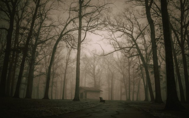 Ghost Tours and Haunted Trails in Austin