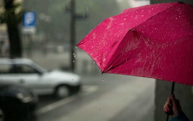 Things to Do on a Rainy Day in St. Pete | Museums, Movies, More