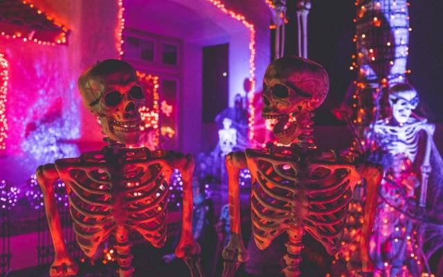 Halloween Events In Denver