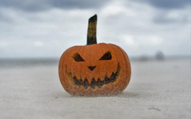 Best Things to Do this Halloween in Florida 2017