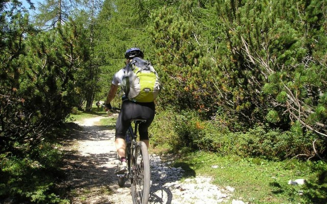 Where to Go Biking in the Everglades