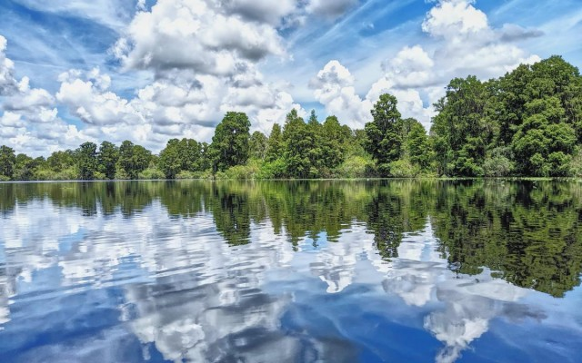 Lettuce Lake Park, North Tampa | Canoeing, Nature Trail