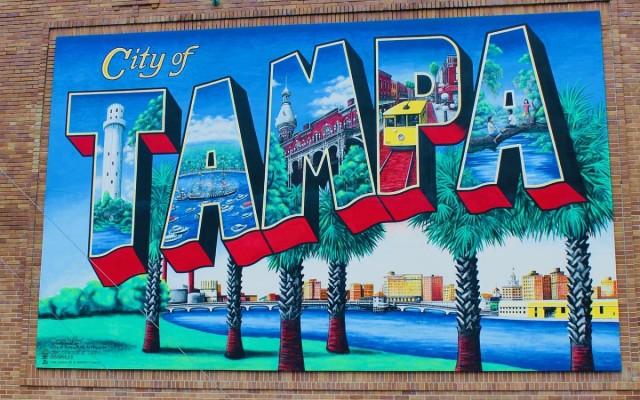 Best Neighborhoods in South Tampa