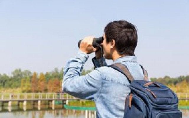 Birding and Wildlife in South Mississippi