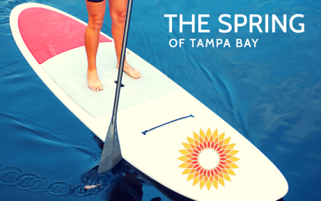Paddle for Peace benefiting The Spring