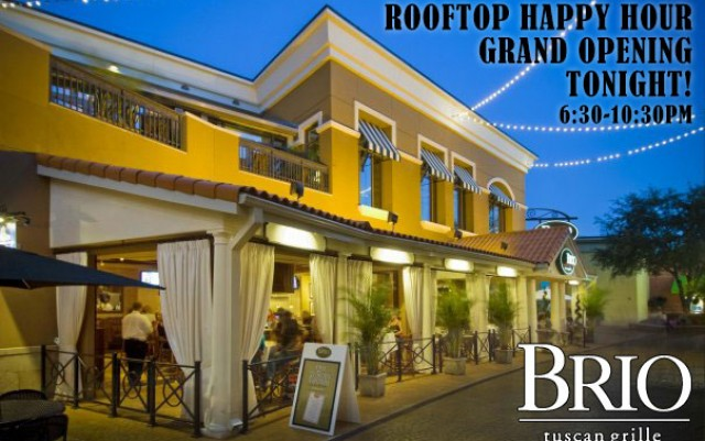 Rooftop Wednesday Happy Hour at Brio
