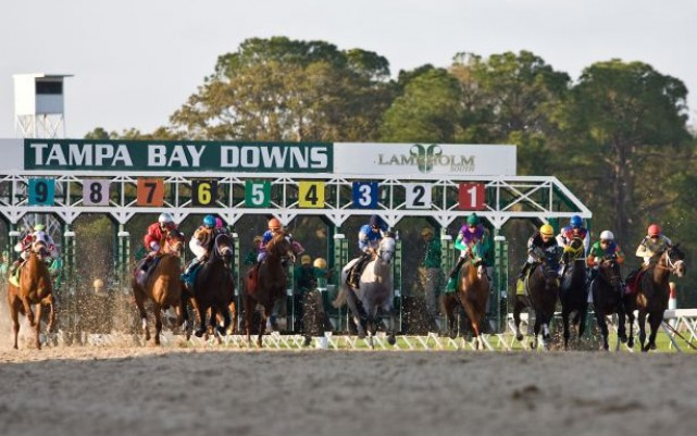 Tampa Bay Downs Racing Season Returns on November 24th!