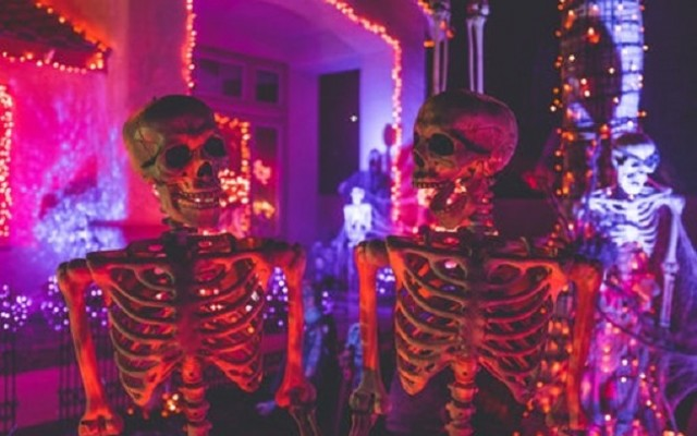 Halloween Parties in St Pete and Clearwater Perfect for an Adult Good Time