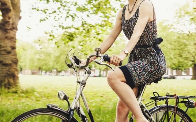 Best Bike Trails in Sarasota