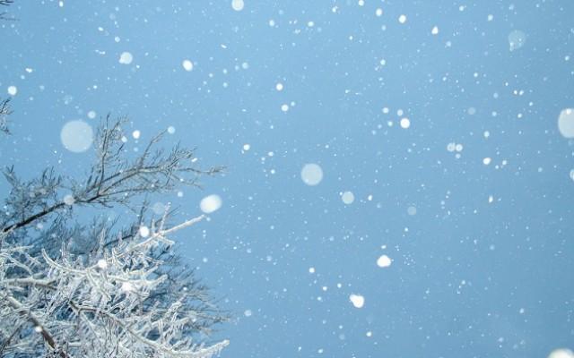 Snowcat Ridge Alpine Snow Park Brings Snow Activities to Tampa Bay This Month