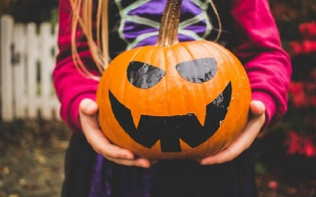 Family-Friendly Halloween Events in Sarasota
