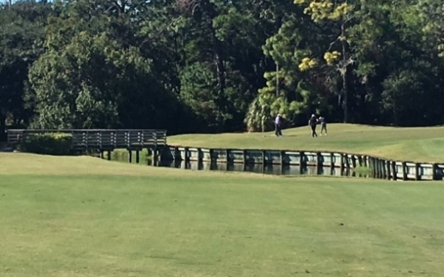 Palm Harbor Golf Resort Westin Innisbrook Reopens North Course
