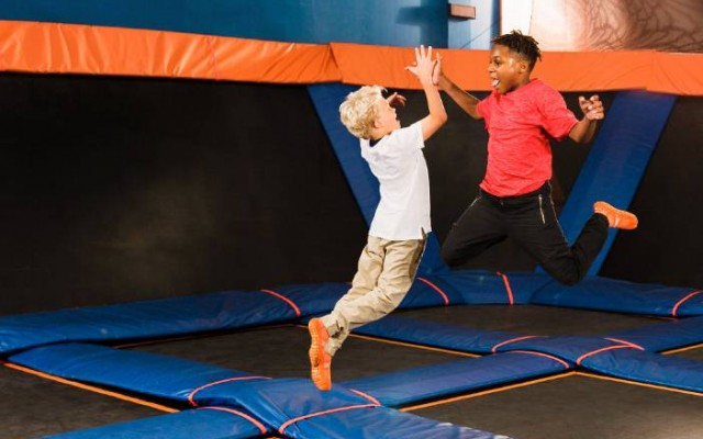 Join Jump For Paws For a Doggone Good Time at Sky Zone Tampa!