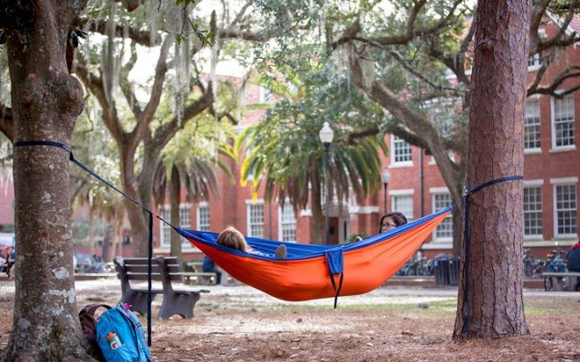 Welcome Back, Gators! Your Go-To Guide to the Fall Semester