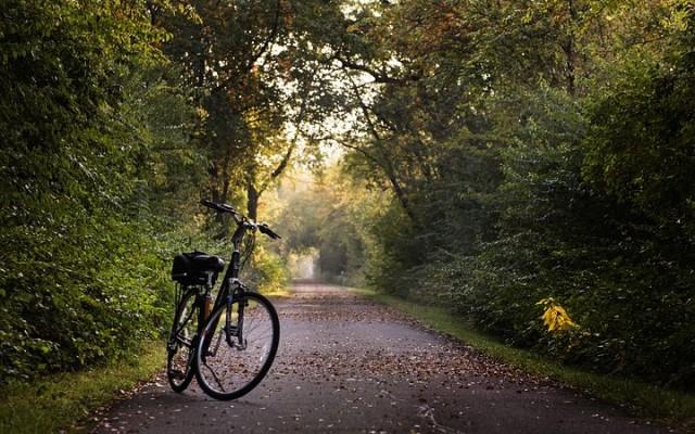 Best Bike Trails in Tallahassee