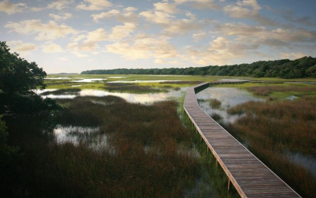 Bald Head Island Brings Unmatched Natural Beauty to North Carolina's Coast