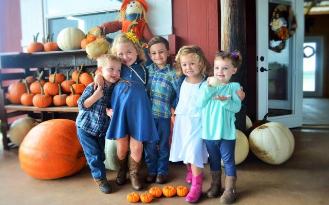 Fall Activities In Orlando: Corn Mazes, Pumpkin Patches & Family Fun
