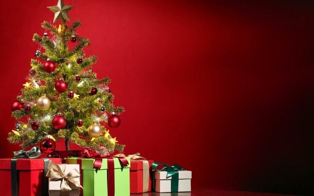 Where to Buy Christmas Trees in Atlanta