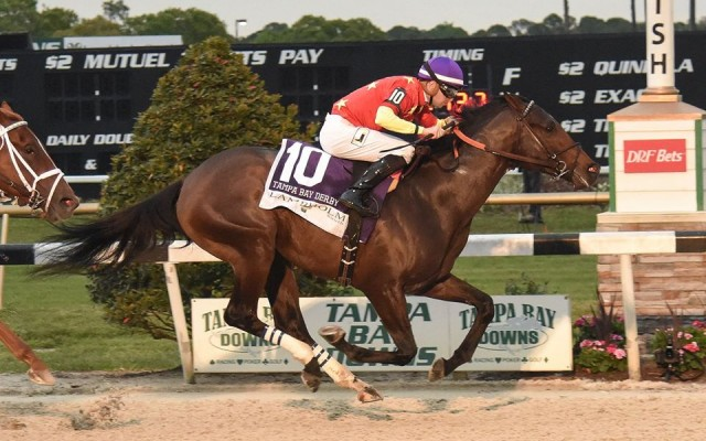 Tampa Bay Downs' Stakes Season: Live It Up At the Downs
