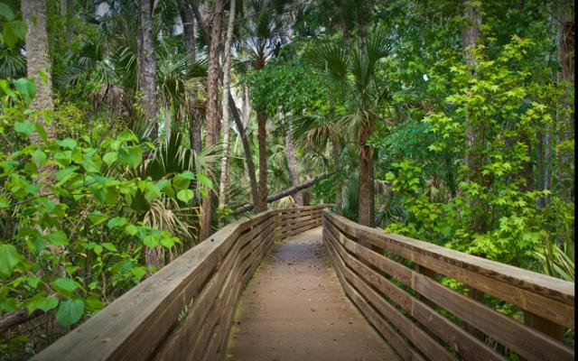 Best Hiking Trails In Orlando