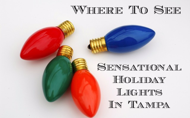 Where to See Sensational Holiday Lights in Tampa Bay