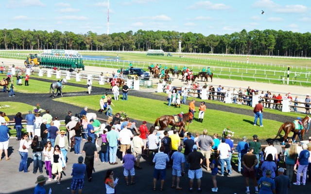 Race to Fourth of July with Tampa Bay Downs Season Finale
