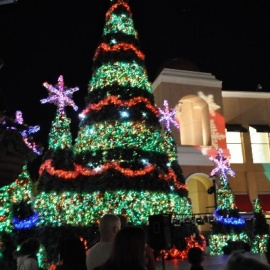 Find Christmas Events in Knoxville