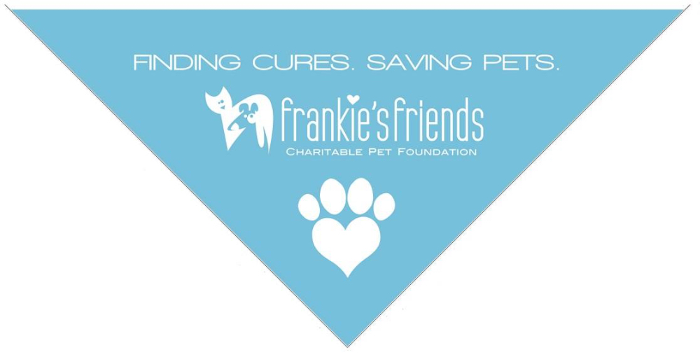 Frankie's Friends Raises Over $80,000 with Lucky Dog Casino Night