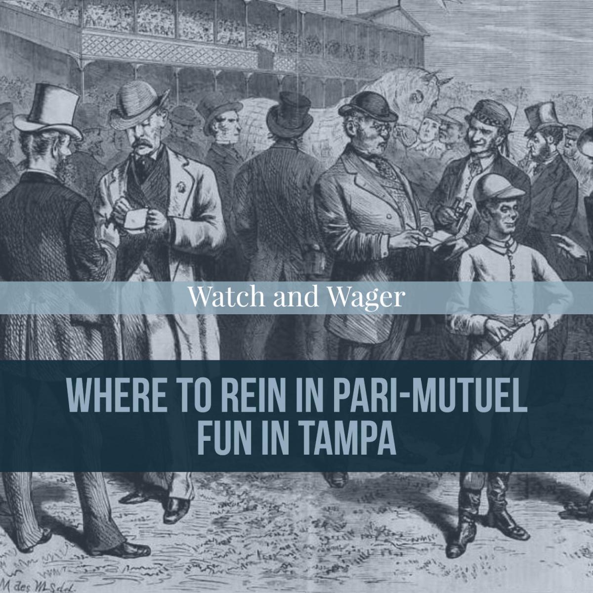 Watch and Wager; Where to Rein in Pari-Mutuel Fun in Tampa