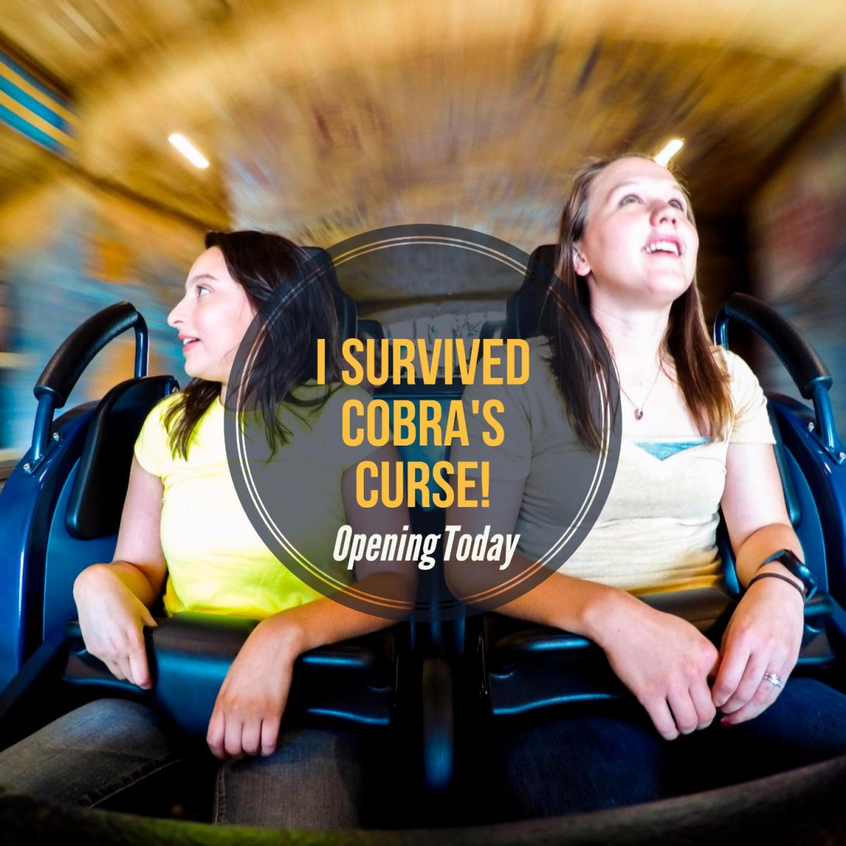 Cobra's Curse is an Exhilarating Family Experience